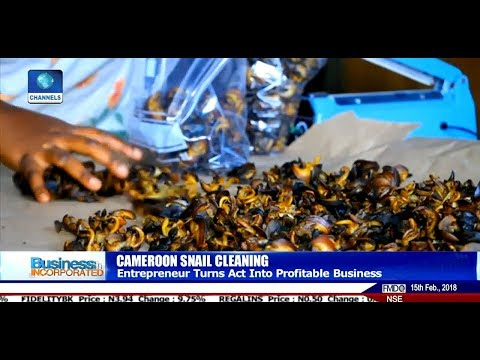 Nina Nigasa Turns Snail Processing Into Profitable Business In Cameroon |Business Incorporated|