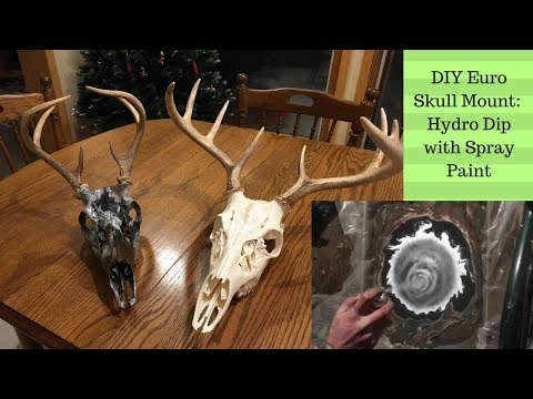 How to Hydro Dip European Skull Mount with Spray Paint