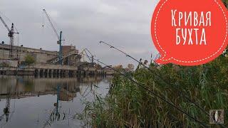 ПЛОТВА на фидер Кривая бухта Рыбалка в Запорожье 2020