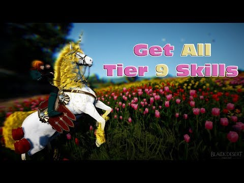 Get All Skills On Your Tier 9 Dream Horse - 100% Way To Force Skills - BDO