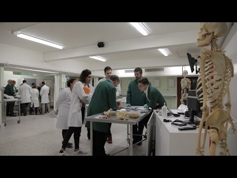 Body of work: the silent teacher helping students learn anatomy