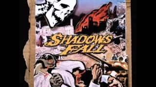 In Effigy - Shadows Fall