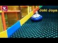 ИГРЫ ГОРКИ И ТАРЗАНКА в Детском Развлекательном Центре Joki Joya mp3