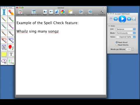 Kurzweil 3000 MAC V4: Word Recognition & Spelling/Speaking & Writing - Spell Check Button Video