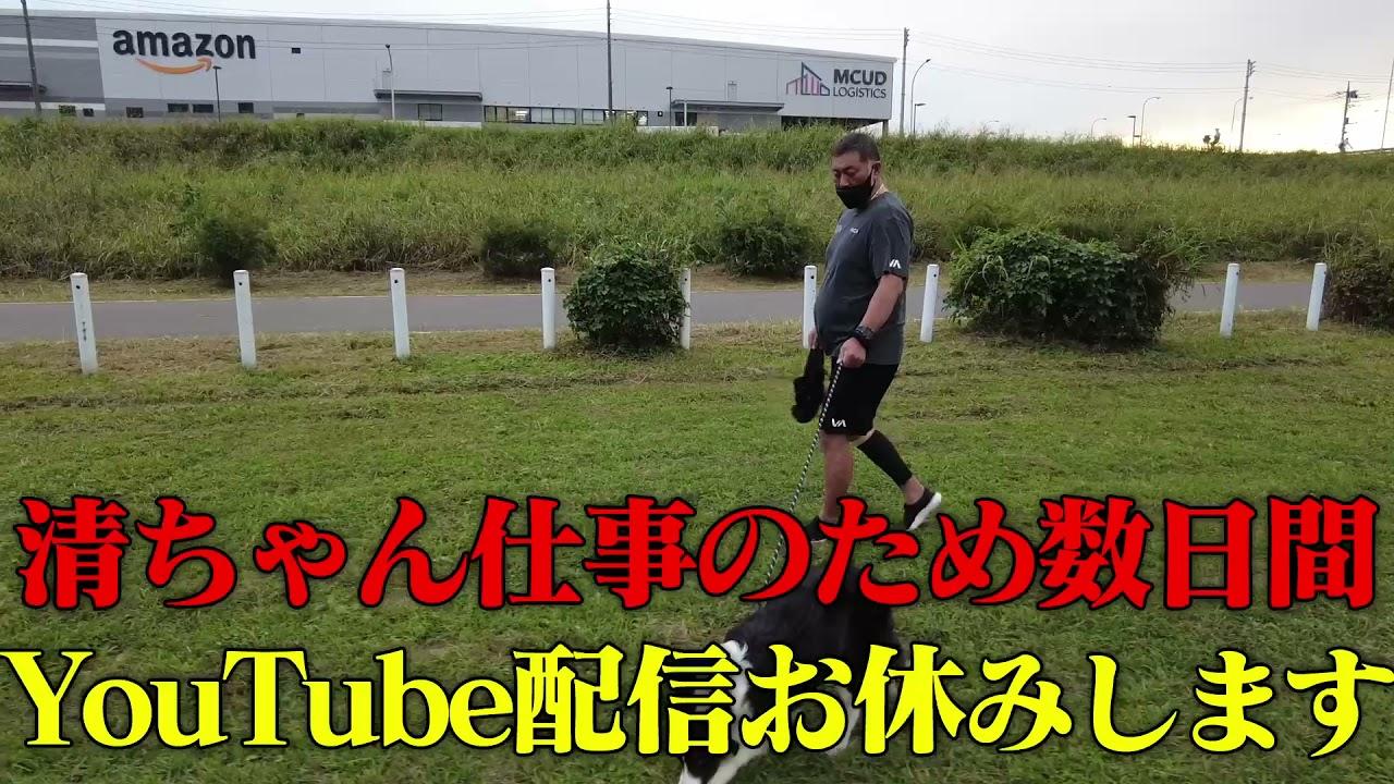 清ちゃん仕事の為YouTube配信数日間お休みします。