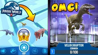 Catching Velociraptors and Triceratops in Jurassic World Alive