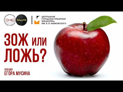 Правильное питание и химическое яблоко. Егор Мусин