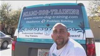 Dog Training & Care : How To Become A Certified Dog Trainer