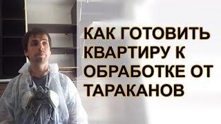 видео Уничтожение тараканов в Щелково