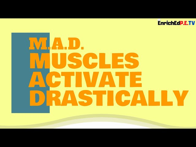 M.A.D. Deltoids by Adam Forbes