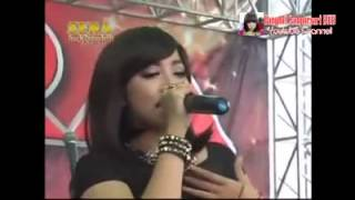 Video Dangdut Hot Koplo SERA DIKIRO PREMAN - GOYANG DUMANG Goyang Hot Terbaru download MP3, 3GP, MP4, WEBM, AVI, FLV Desember 2017