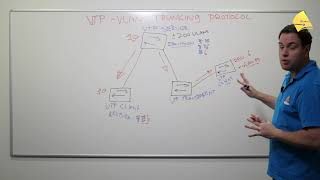 Introduction to VTP (VLAN Trunking Protocol)