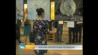 """Смотреть видео Выставка """"Первозданная Россия"""" открылась в Иркутске онлайн"""