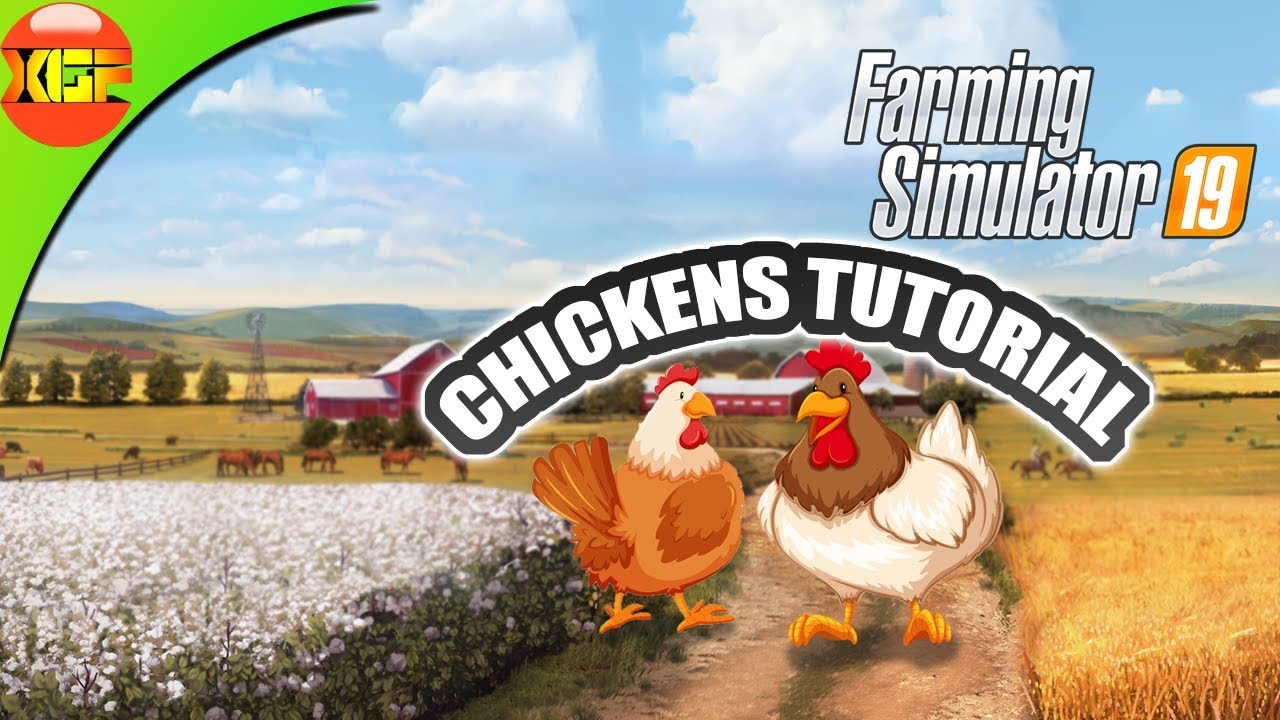 Farming Simulator 19 Tutorial 3 All About Chickens Youtube