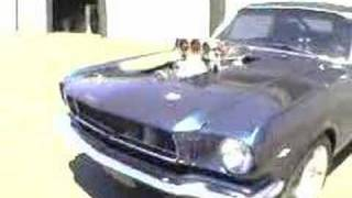 Supercharged 1965 Mustang burnout