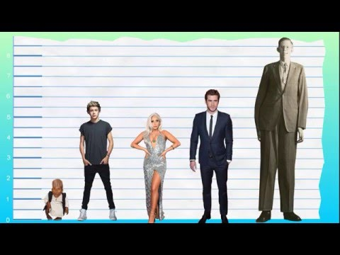 How Tall Is Niall Horan? - Height Comparison!