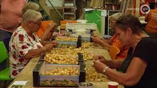 'Vriendjes' helpen Fruitcorso niet uit financiële problemen
