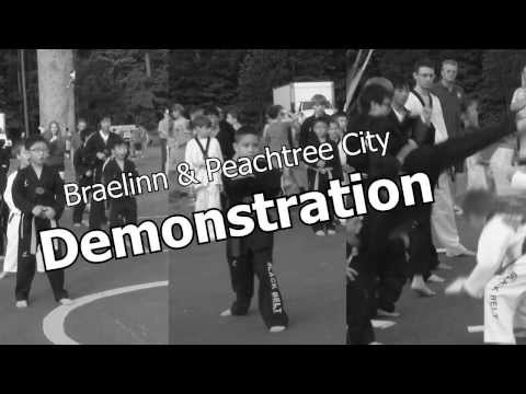 Braelinn Elementary School - American Black Belt Academy PTC