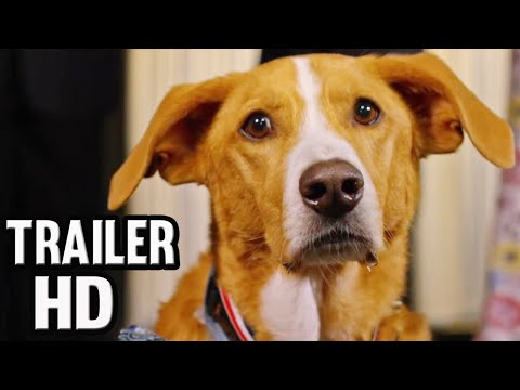 AGENT TOBY BARKS OFFICIAL TRAILER (2020) | HD