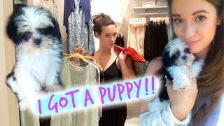 I GOT A PUPPY!!!! + SHOPPING SPREE!!! Thumbnail