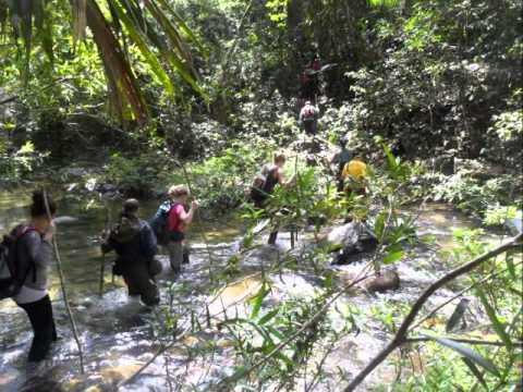 Northern Michigan University Spring Break in Belize