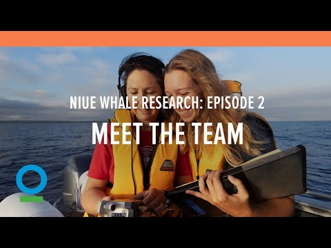 Niue Whale Research, Episode 2, Meet the Team