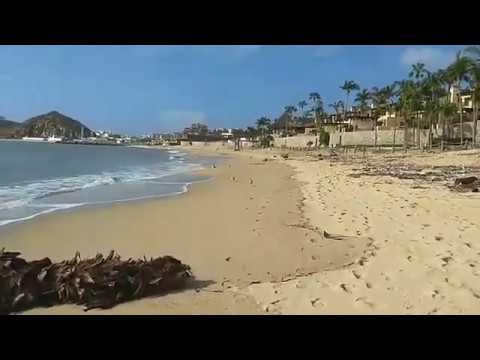 Limpieza de playa El Médano en Cabo San Lucas después del paso de Tormenta Tropical Lidia