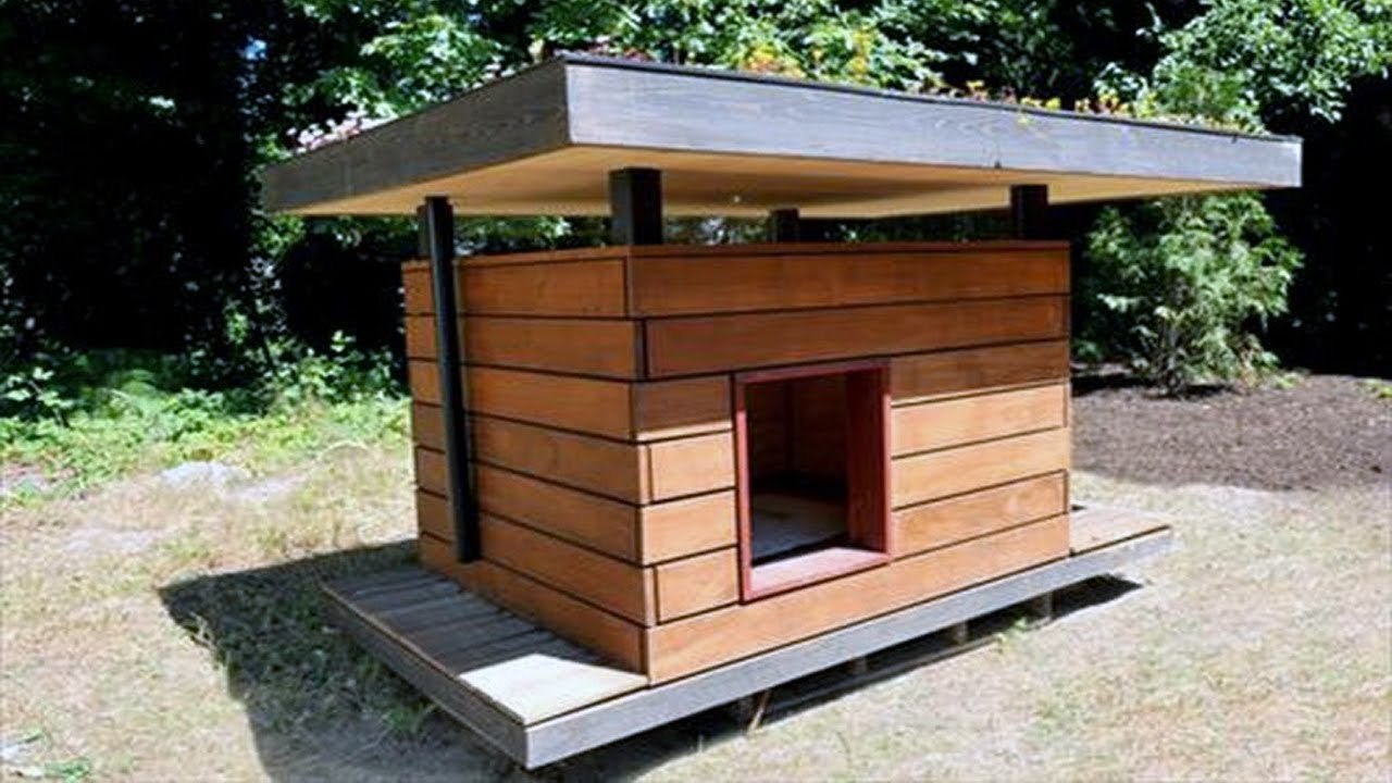 dog house ideas for winter youtube