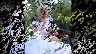свадьба в твери
