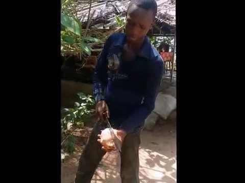 Reportage COTE d'IVOIRE