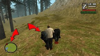 Secret Black Lion Location in GTA San Andreas! (Secrets and Facts)