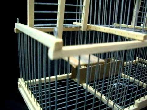 cage pi ge tr buchet attrape oiseaux vivants sans blesser a vendre youtube. Black Bedroom Furniture Sets. Home Design Ideas