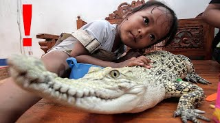 The Most UNUSUAL Pets On Earth