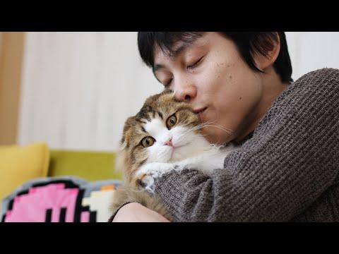 パパの愛がついにツンデレもふ猫に通じたようです!