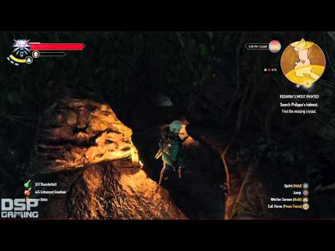 The Witcher 3 (PS4) playthrough pt91 - Searching For Philippa/SWEET Feline Witcher Sword!