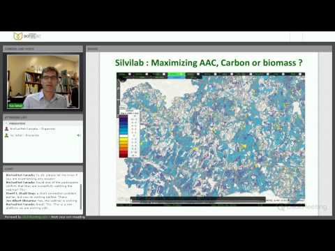 Optimizing the value creation network of the woody-biomass based industry