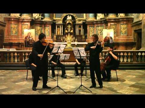 J. S. Bach - Double concerto 1/3 - Smovzh, Zavgorodnii, Phoenix String Quartet