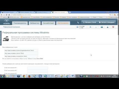 видео: Миралинкс  Заключение
