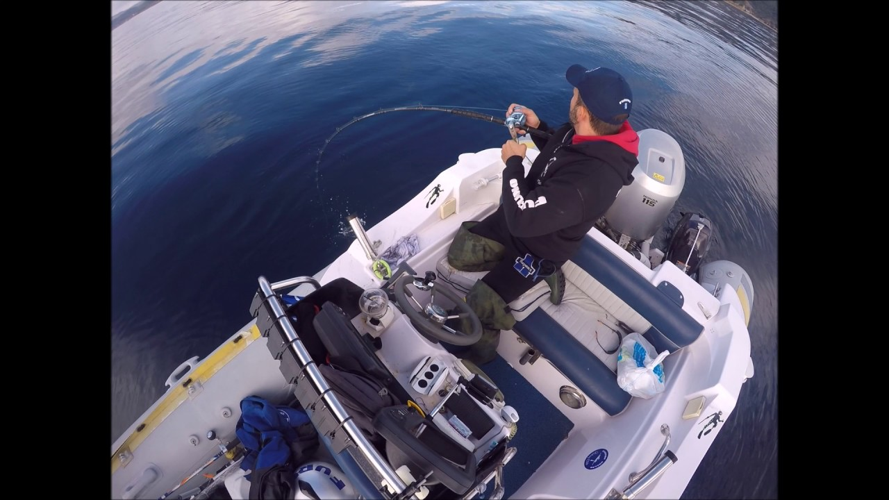 X PARAGON KABURA /& BAITING BOTTOM FISHING SYSTEM NATURAL ZOKA BALL 240g