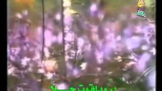 نشيد وصف النبي المصطفى
