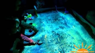 видео интерактивная песочница