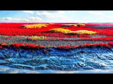 Panjin Red Beach View Colour_Wonders of the world (HD1080p)