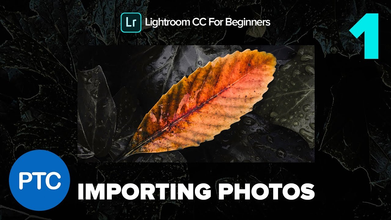 Importing Files Into Lightroom CC – Lightroom CC for Beginners FREE Course – 01