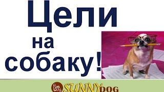 цели на собаку  как ставите цели на собаку наследующий год