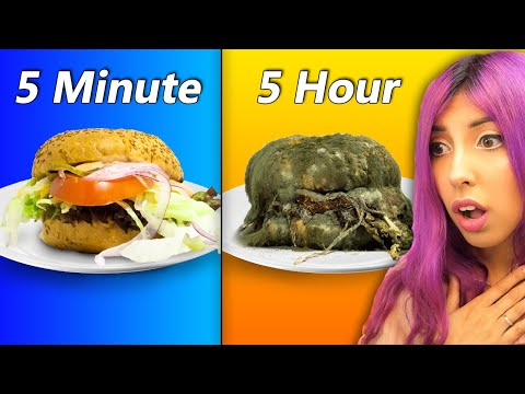 These FOOD Time Lapse Videos Will SHOCK You...