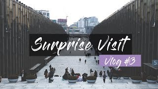 Korean Vlog #3 - Dog Cafe, Ewha University & Anh Thu!