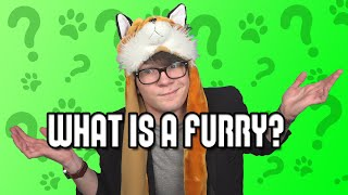 What is a Furry?