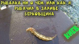 Рыбалка ни о чём, или как я рыбачил в заливе Берковщина. Киев