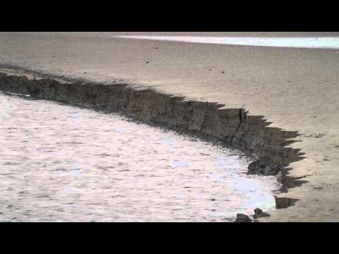 Channel erosion - blocks of bank sediment fall into the River Loughor, Wales, UK.