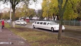 Такого Гомель еще не видел!!! 9 лимузинов для предпринимателей нашего бизнес-проекта!
